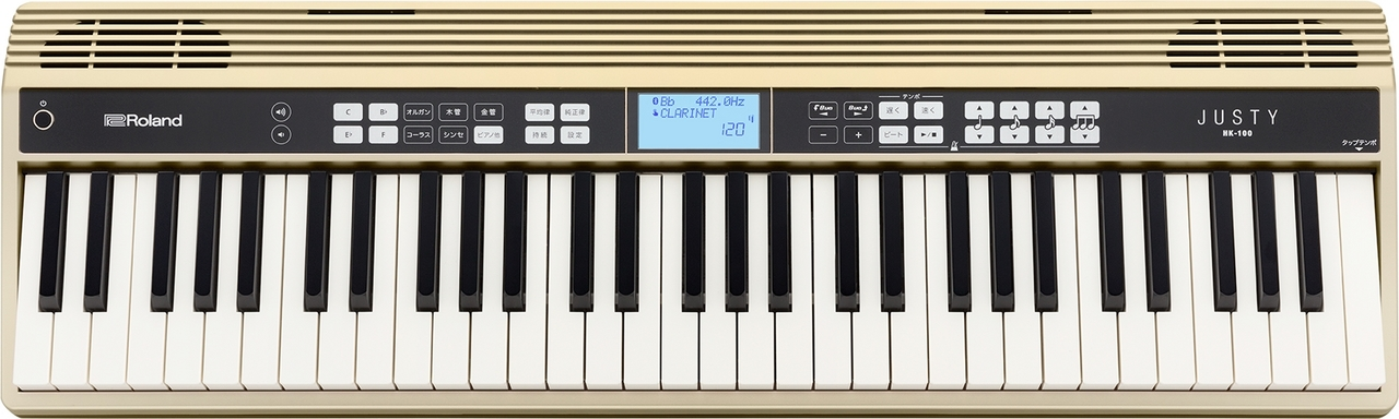 Roland JUSTY HK-100