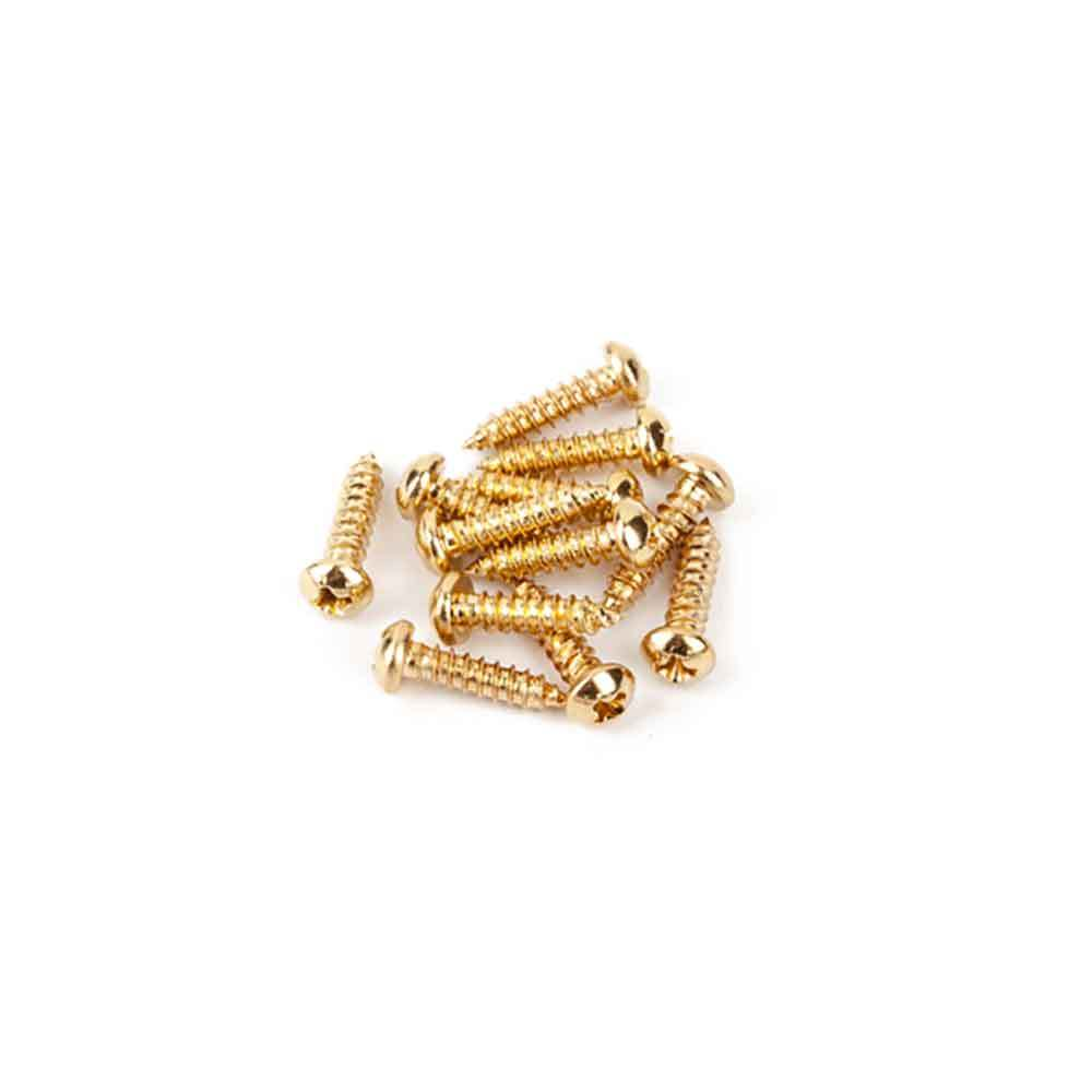 Fender Pure Vintage Tuning Machine Mounting Screws Gold 12 スクリュー