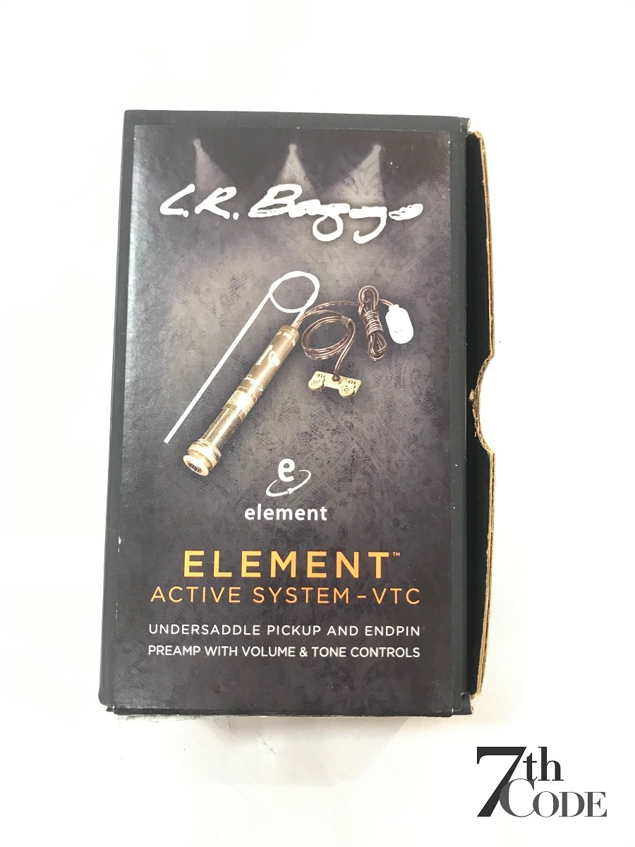 L.R.Baggs ELEMENT VTC