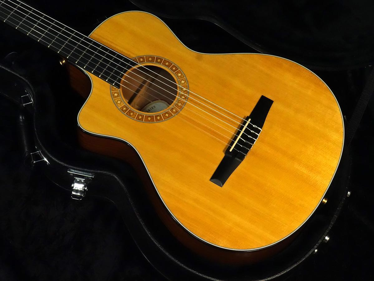 Taylor NS32ce Left hand