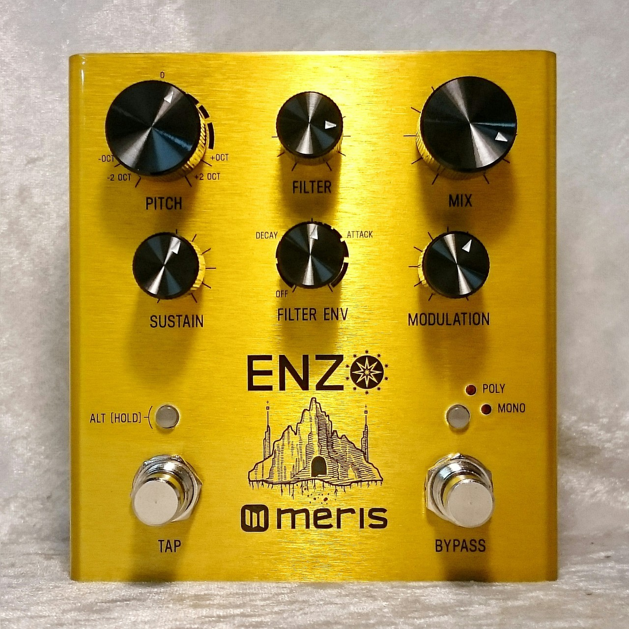 meris Enzo (multi-voice synthesizer pedal) [AC adapter included]
