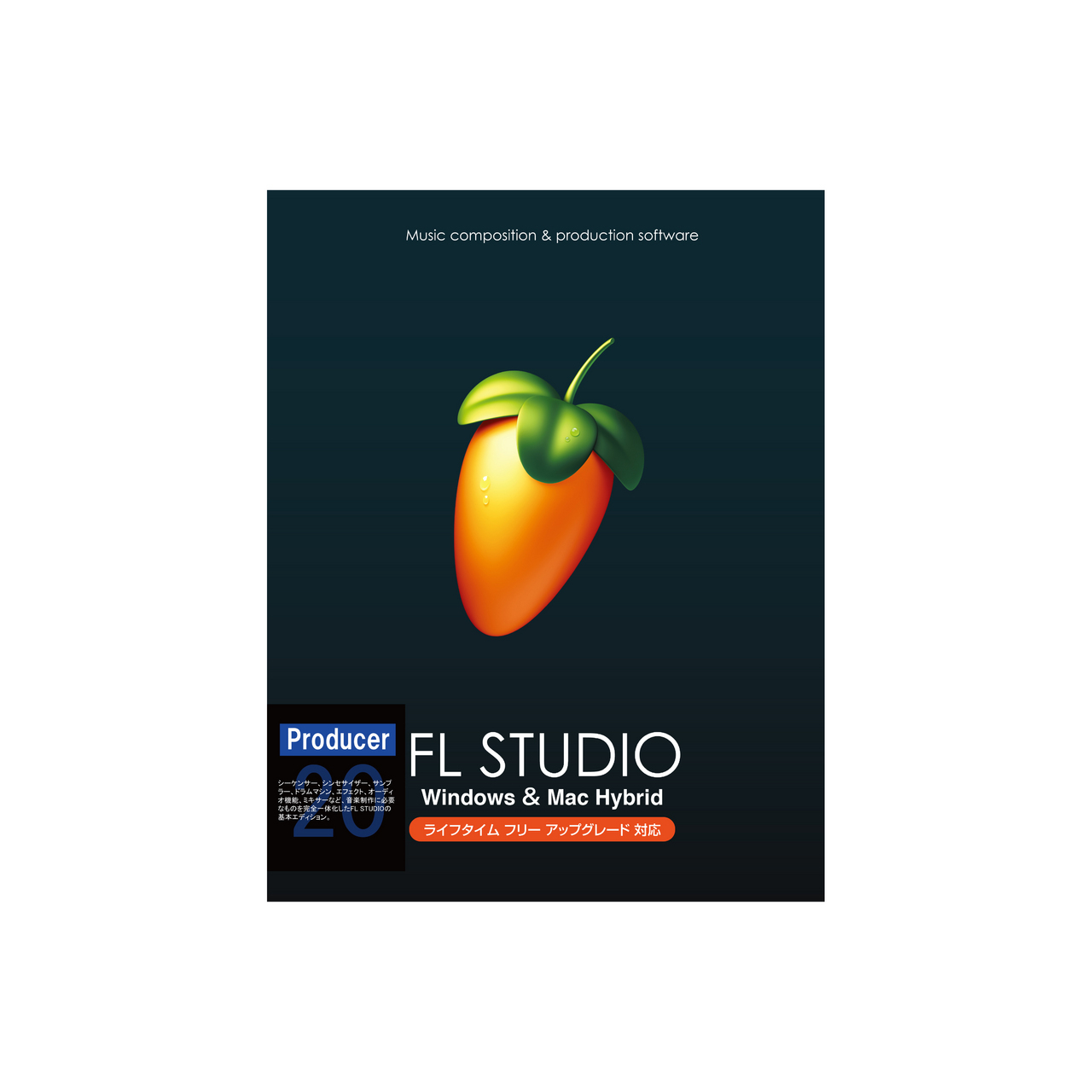IMAGE LINE FL Studio 20 Producer【送料無料】