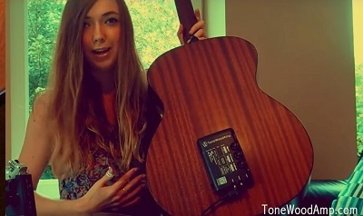 ToneWoodAmp TWAmp ToneWoodAmp [mounting body is in speaker-effector to the electric acoustic guitar!]