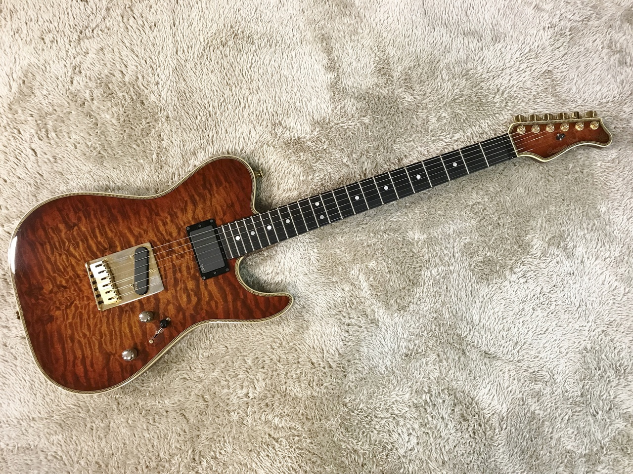 Valley Arts Custom Pro Telecaster Type [used article] [Made in Japan;