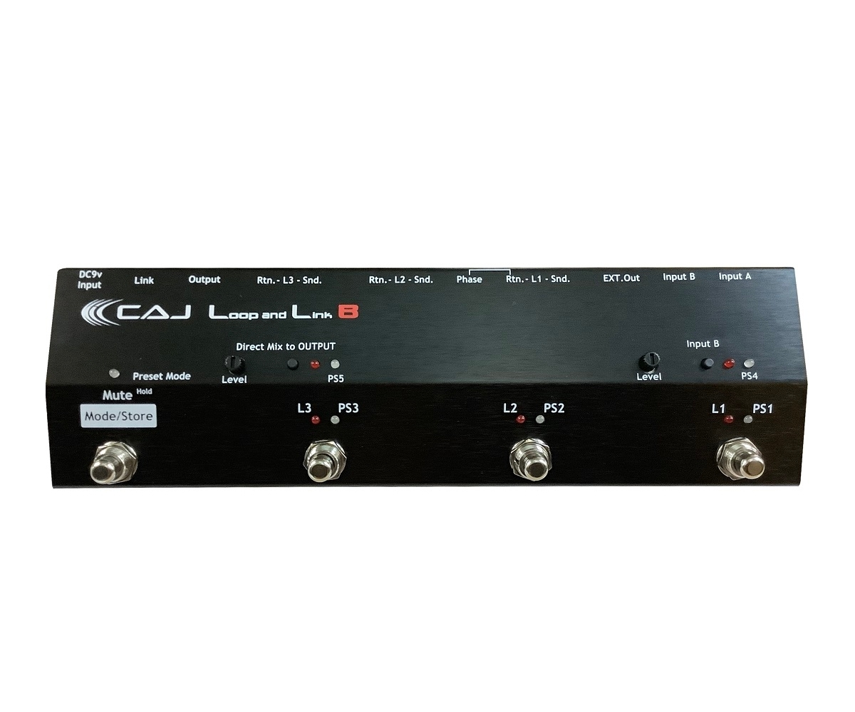 Custom Audio Japan(CAJ) Loop and Link B 【御茶ノ水本店】