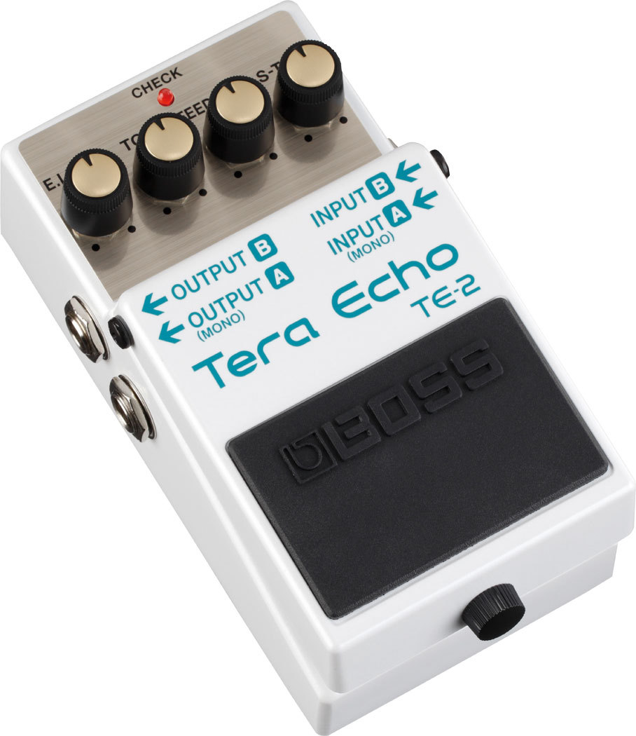 BOSS TE-2 Tera Echo [echo] [Dejimato limited + 9V battery one more service!]