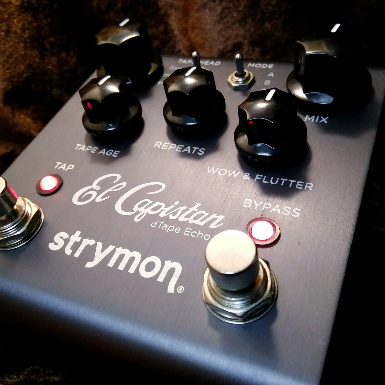 strymon El Capistan [regular imported goods] [beauty products] ☆! 11/20 (Tuesday) until 20! ☆