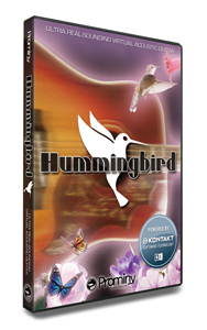Prominy Hummingbird acoustic guitar [of once a KEY year settlement of accounts great bargain! All stores being held until 2/28!]