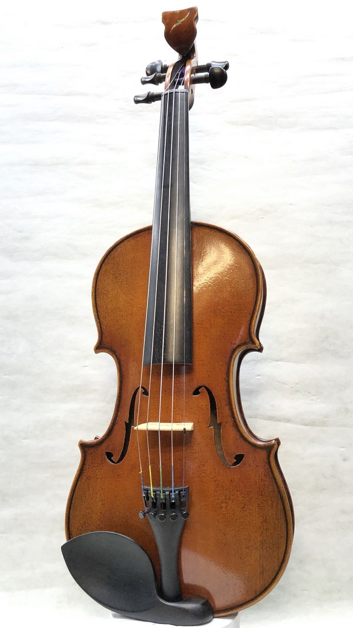 Bridge Violins Tasman 《5string》 S/N T50531