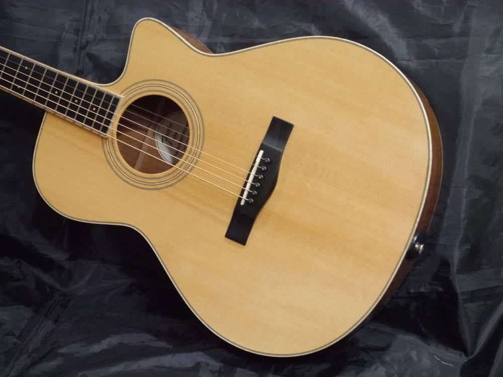 Fender PM-4CE Auditorium Custom