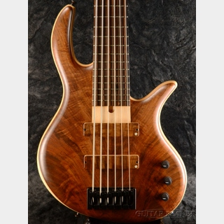 Elrick Gold Series E-volution SLC 6st -Burled Redwood Top/Soft Maple Back- 【2017 USED】