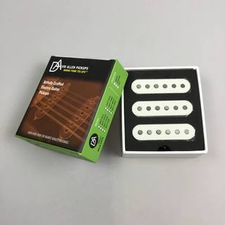 D.Allen Pickups 60's ROCK N BLUES PARCH
