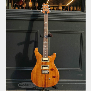 Paul Reed Smith(PRS) Ikebe Original SE CUSTOM 24 Bird Inlay Koa Top
