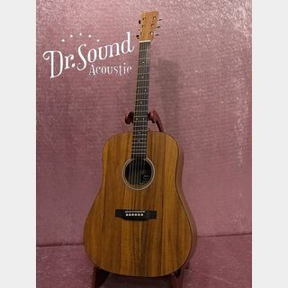 Martin 【USED】DXK2AE 2017年製【Dr.Sound】