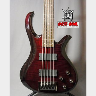 SCHECTER AD-ROT-5