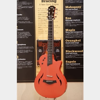 Taylor T5z Classic Deluxe Fall Limited 2017 Fiesta Red (USED) 【ロックイン新宿スーパーセール!~11/17(日)】