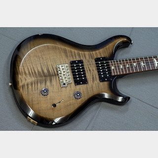 Paul Reed Smith(PRS) S2 CUSTOM 24 Grey Black