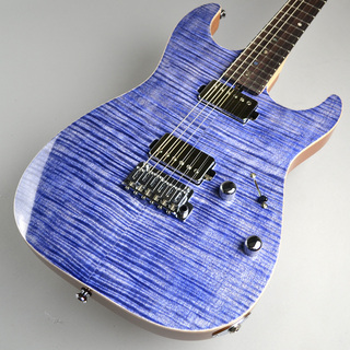 T's Guitars DST-DX22