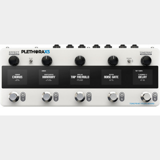 tc electronic PLETHORA X5 【池袋店】
