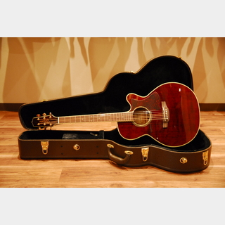 Takamine DMP551C with Contact Pickup WR(Wine Red)