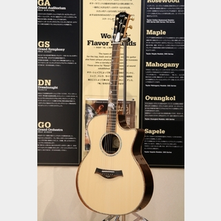 TaylorGAce-Milagro Brazilian Rosewood/Englemann 【ロックイン新宿・the SALE 開催中!1/25,26限定価格】