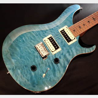 Paul Reed Smith(PRS) SE CUSTOM 24 Roasted Maple Limited / Saphire 【限定モデル】