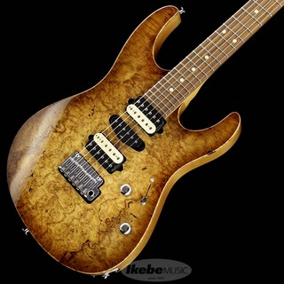 "Suhr(正規輸入品) IKEBE 45th Anniversary Modern Plus ""Burl Maple"" (Natural Burst/Pau Ferro) [SN.JS4N5K]"