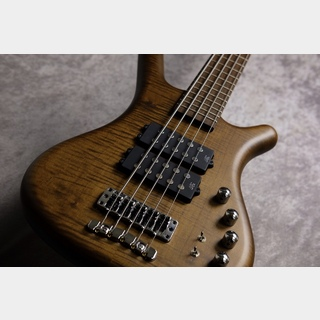 Warwick ProSeries German Teambuild Corvette $$5 -Antique Tabacco- 【S/N H 006454-18】【駅前店】