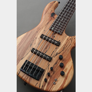 dragonfly 【48回無金利】CS-5CTM -Spalted Maple Top 10mm Alder- 【当店独自仕様】