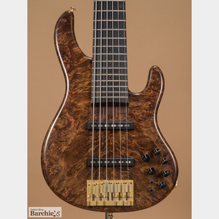 STR GUITARS LS648