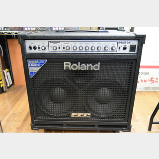 Roland  D-BASS 210 D-Bass Amplifier