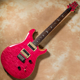 Paul Reed Smith(PRS) Japan Limited Edition SE Custom 24 Quilt Maple Top (Bonnie Pink)
