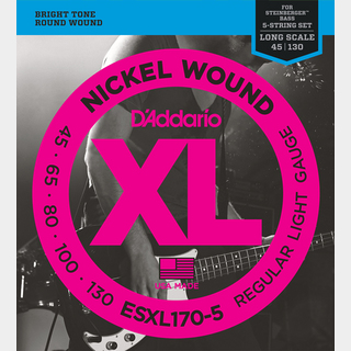 D'Addario Nickel Wound Double Ball End ESXL170-5 Regular Light 45-120 for Steinberger 【名古屋栄店】