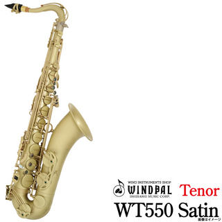 NO BRAND WT550 Satin Lacquer【ウインドパル】【60ヵ月保証】