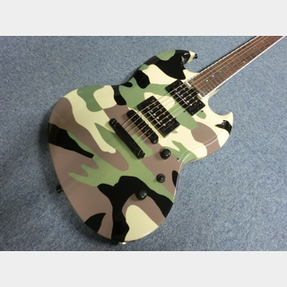 EDWARDS E-VP GREENCAMO