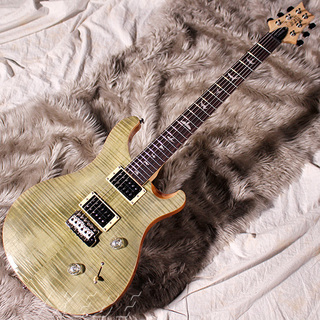 Paul Reed Smith(PRS)SE CUSTOM 24 Bird Inlay [Beveled Maple Top] (Trampas Green)