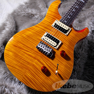Paul Reed Smith(PRS)Japan Limited SE CUSTOM 24 Bird Inlay [Beveled Maple Top] (Vintage Yellow)