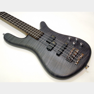 Warwick Germany Team Built Streamer LX 4st Maple Top / Nirvana Black Transparent Satin【GPS F 006036-18】