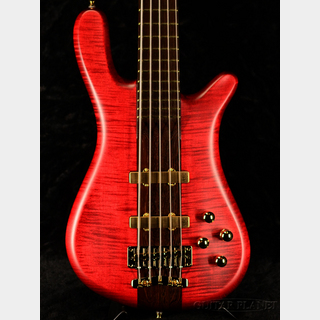 Warwick 【デジマート限定SALE】Custom Shop Basic Streamer Stage1 5st - SHPBR -【全国送料無料】