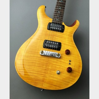 Paul Reed Smith(PRS) SE Paul's Guitar ~Amber~ ≒3.08kg #C12000【良杢個体!】