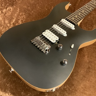 SAITO GUITARS S-622 -Black- 【USED】