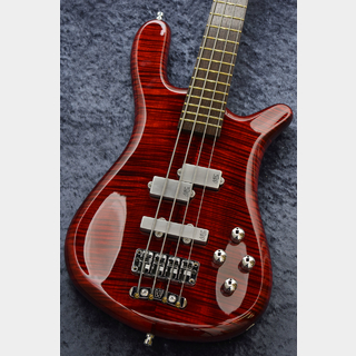 Warwick Custom Shop Streamer LX4 -Burgundy Red THP-【NEW】