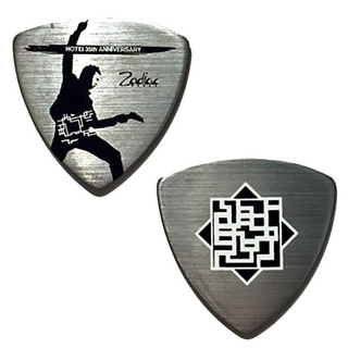 FERNANDES HOTEI 35th Anniversary Pick ×10枚セット
