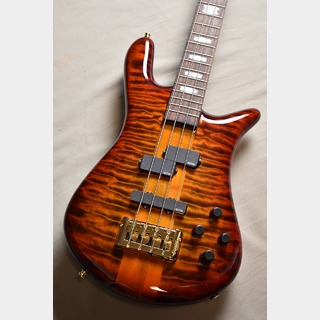 Spector LEYER MODEL EURO 4 LX RAS LAYER -Twilight Amber- 【ご予約キャンセル分、即納可能】