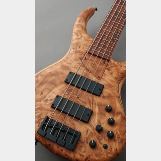 MTD MTD 535-21 -Cottonwood Burl Top- 【USED】【極杢】