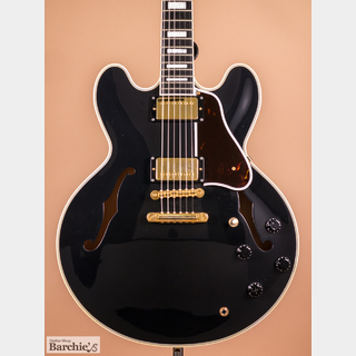 TOM HOLMES THC Semi Hollow Custom