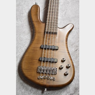 Warwick Teambuild Streamer Stage I 5st -Antique Tobacco Satin-【NEW】【駅前店】