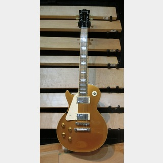 EDWARDS E-LP-125SD/LH