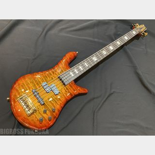 Spector  EURO5 LX-PJ RAS LAYER - Twilight Amber -