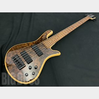 Spector Legend 5 Classic (Natural Walnut Burl Gloss)